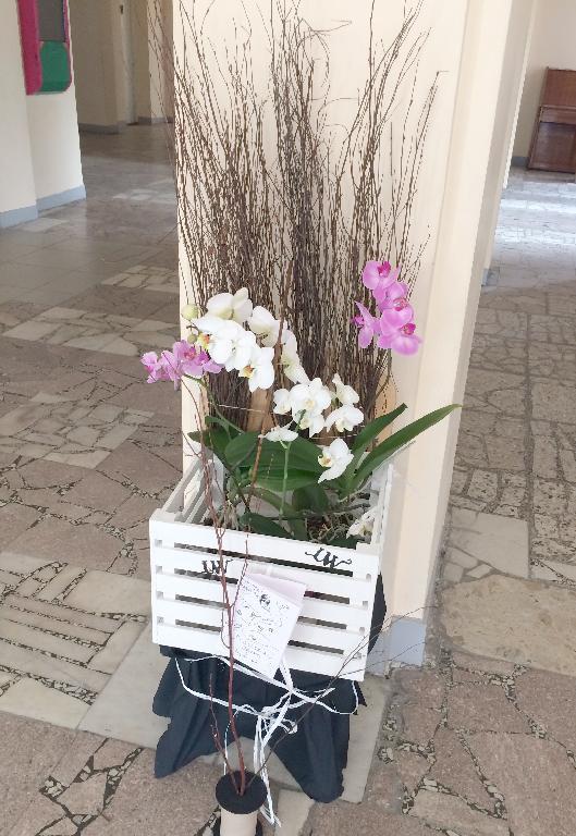 Вист квітів сс