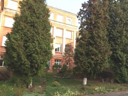 гімназія восени - 31